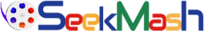 Seekmash Video Search